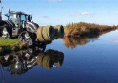 Klimaatslimme boeren in Vlist starten met waterinfiltratie in veenweiden